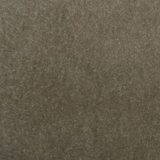 Mink Decorator Fabric by Clarence House