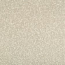 Sand Skins Decorator Fabric by Kravet