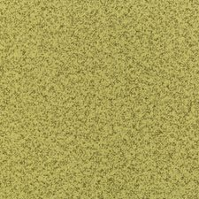 Celery/Green Solids Decorator Fabric by Kravet