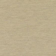358107 DK61162 152 Wheat by Robert Allen