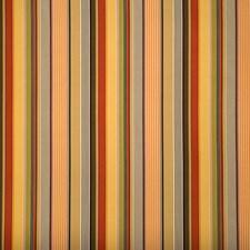 Spice Print Pattern Decorator Fabric by Fabricut