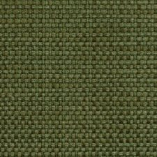 Ivy Decorator Fabric by Duralee