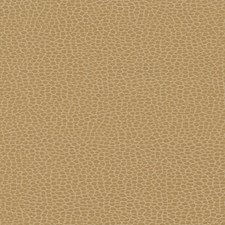 Cashmere Decorator Fabric by Schumacher