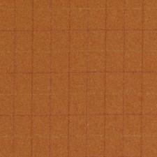 369904 DW61169 34 Pumpkin by Robert Allen