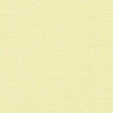 370567 DK61276 596 Buttermilk by Robert Allen