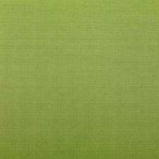 375416 DK61566 21 Avocado by Robert Allen