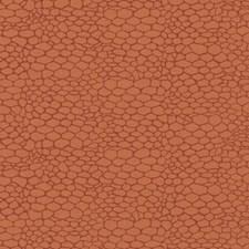 378616 15654 35 Tangerine by Robert Allen