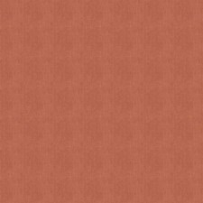 Coral Clay Solid Decorator Fabric by Stroheim