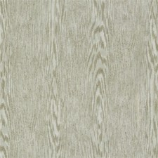 Fossil Contemporary Decorator Fabric by Kravet