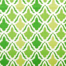 Kelly Decorator Fabric by Duralee