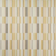 Sahara Modern Decorator Fabric by Kravet