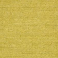 Celery Solids Decorator Fabric by Kravet