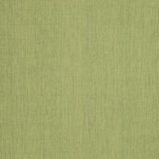 Jungle Texture Plain Decorator Fabric by Trend