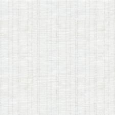 White/Silver Metallic Decorator Fabric by Kravet