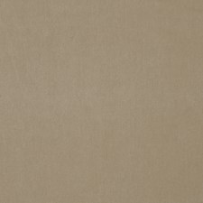 Taupe Solid Decorator Fabric by Stroheim
