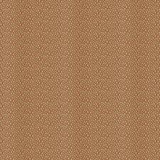 Burnt Orange Contemporary Decorator Fabric by Fabricut
