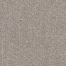 Dark Brown Print Pattern Decorator Fabric by Fabricut