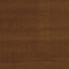 Amber Solid Decorator Fabric by Fabricut