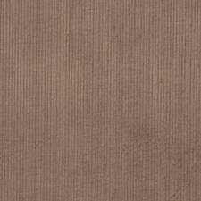 Stucco Texture Plain Decorator Fabric by Trend