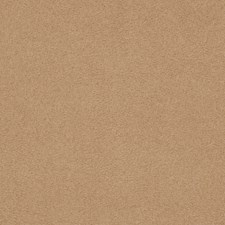 Mica Solid Decorator Fabric by Trend
