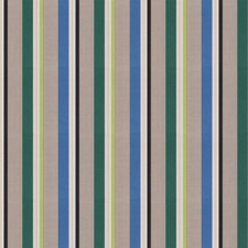 Meadow Stripes Decorator Fabric by S. Harris