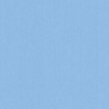 511888 DK61731 59 Sky Blue by Robert Allen