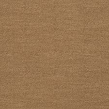 Bark Solid Decorator Fabric by Trend