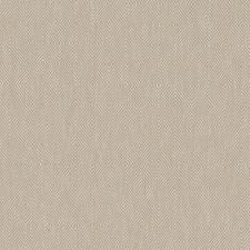 516105 DI61827 564 Bamboo by Robert Allen