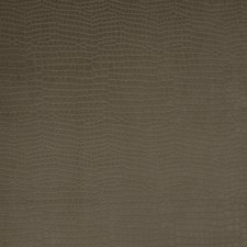 Chipmunk Animal Decorator Fabric by Trend