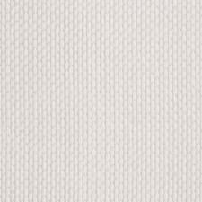 Ivory Novelty Decorator Fabric by Stroheim