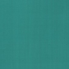Neptune Green Solid Decorator Fabric by Stroheim