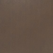 Outback Animal Decorator Fabric by Fabricut