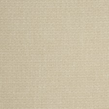 Dune Solid Decorator Fabric by Fabricut
