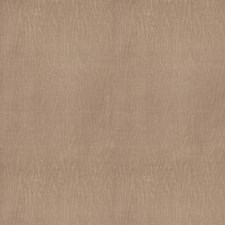 Antelope Global Decorator Fabric by Vervain