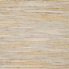 Sahara Novelty Decorator Fabric by Fabricut