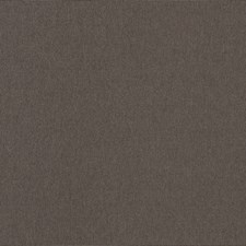 Granite Solid Decorator Fabric by Trend