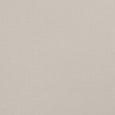 Oyster Texture Plain Decorator Fabric by Trend