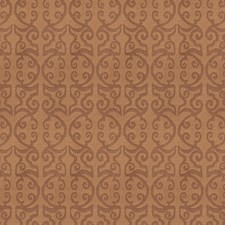 Rawhide Global Decorator Fabric by Vervain