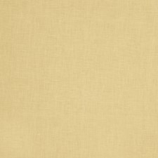 Solid Decorator Fabric by Stroheim