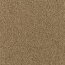 Herb Decorator Fabric by Schumacher