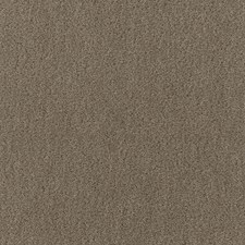 Thyme Decorator Fabric by Schumacher