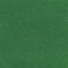 Shamrock Decorator Fabric by Schumacher