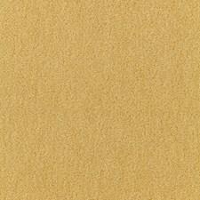 Absinthe Decorator Fabric by Schumacher