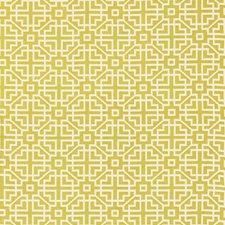 Citron Decorator Fabric by Schumacher