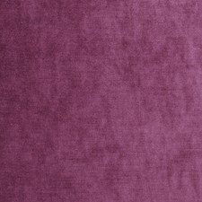 Passion Solid Decorator Fabric by Fabricut