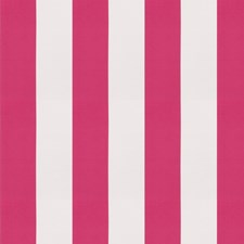 Grenadine Stripes Decorator Fabric by Trend