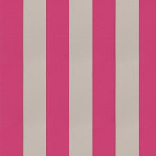 Sorbet Stripes Decorator Fabric by Trend