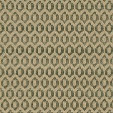 Boxwood Global Decorator Fabric by Trend