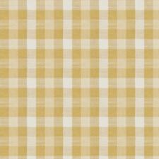 Citrus Check Decorator Fabric by Fabricut