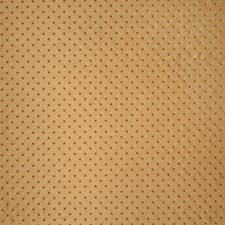 Antique Contemporary Decorator Fabric by Trend